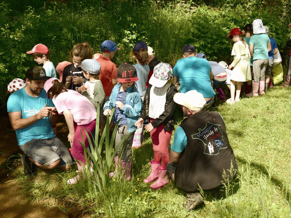 Découverte des milieux aquatiques pour les enfants